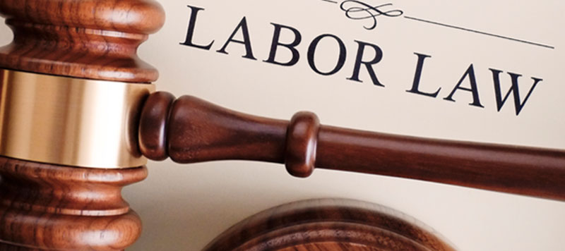 đơn phương chấm dứt hợp đồng lao động